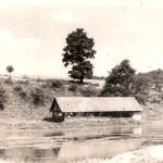 Ovčín u horního rybníka, zdroj: Václav David