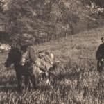 cca 50. léta 20. stol., zdroj: Štěpán Šimečka